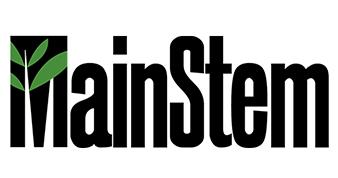 MainStem
