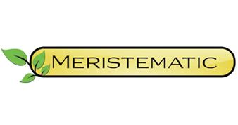 Meristematic
